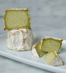 Vermatcha Cheese